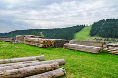 Logs in mountain Royalty Free Stock Photography