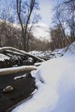 Logs over River in Winter. Snowy river scene with logs bridging over the water Royalty Free Stock Photography