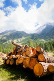 Logs and panorama Stock Photos