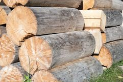 Logs without peel from spruce Stock Image
