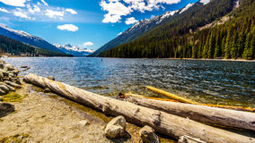 Logs que colocam na costa do lago Duffey Fotos de Stock Royalty Free