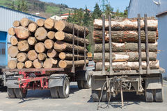 Logs at the sawmill. Image of logs at the sawmill Royalty Free Stock Photography
