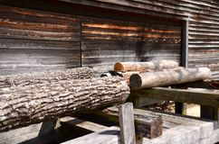 Logs at Sawmill. Logs at a sawmill ready for processing into planks Stock Images