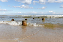 Logs and sea. Royalty Free Stock Photo