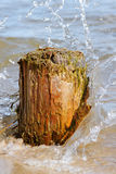 Logs and sea. royalty free stock photos
