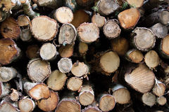 Logs Royalty Free Stock Photography