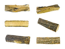 Logs. Six images of oak logs, isolated royalty free stock images