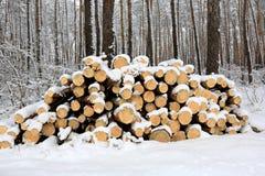 Logs sous la neige Photographie stock libre de droits