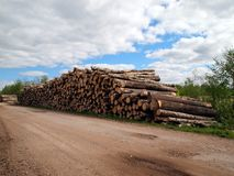 Logs Stack Stock Images