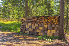 Logs Stack Royalty Free Stock Photo