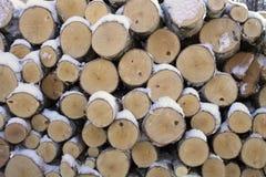 Logs Royalty Free Stock Photo