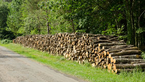 Logs. Stack of tree logs by side of road Royalty Free Stock Photography