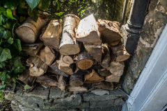Logs stacked and piled Royalty Free Stock Photos