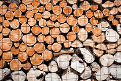 Logs stacked and stored Stock Photo