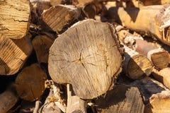 logs Struttura organica naturale con le crepe e una superficie ruvida fotografie stock