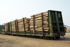 Logs in Transit 1. Logs arriving on railcar at a sawmill Stock Photography