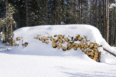 Logs under the snow Stock Images