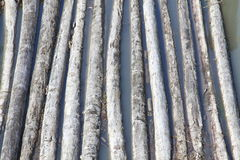 Logs Waiting for Processing Royalty Free Stock Photography