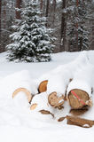 Logs in winter Stock Photo
