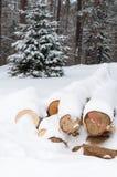 Logs in winter stock photo