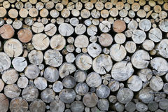 Logs of wood. A pile of logs of various sizes lying in good order Stock Image