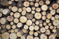 Logs with wood Stock Photography