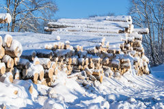 Logs of wood buried in snow Stock Photography