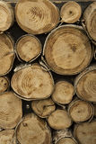 Logs of wood Stock Photography