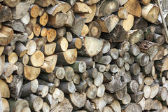 Logs of Wood of Different Kinds, Sizes and Shapes Piled Together Royalty Free Stock Images