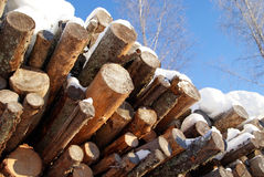 Logs for Wood Fuel in Winter. A pile of pine and spruce logs for wood fuel on a sunny day, with blue skies and frosted birch trees on the background Stock Photos