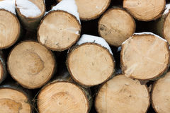 Logs of wood with snow Royalty Free Stock Photo