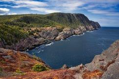 Logy fjärdkustlinje i Newfoundland royaltyfri fotografi