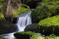 Lohnbachfall, Mystic Creek, Waldviertel, Austria Stock Photography