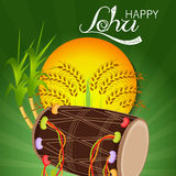 Lohri Royalty Free Stock Photo