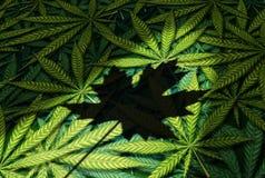 Loi de Canada de cannabis illustration stock