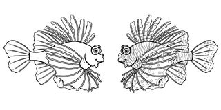 Loinfish na białym tle Obraz Royalty Free