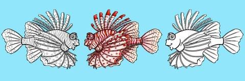 Insieme del lionfish rosso fotografia stock immagine di - Contorno squalo martello ...