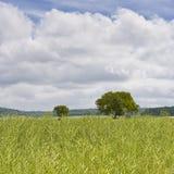 Loire field Stock Photos