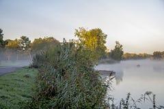 Loire widok rzeczny bagno Fotografia Royalty Free