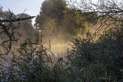 Loire widok rzeczny bagno Obrazy Stock