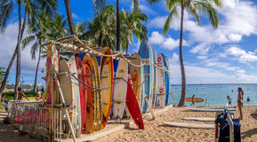 Loja alugado da ressaca na praia de Waikiki Imagem de Stock Royalty Free