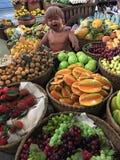 Loja bonito do fruto da falsificação da variedade Fotografia de Stock