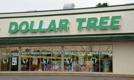Loja da árvore do dólar Fotografia de Stock Royalty Free