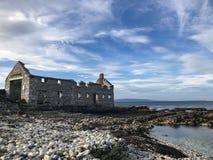 Loja da alga na ilha de Rathlin fotografia de stock royalty free