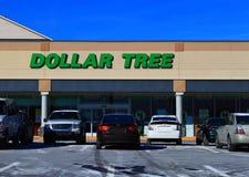 Loja de disconto da árvore do dólar Fotos de Stock Royalty Free