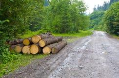 Loja de feixe de madeira Fotografia de Stock Royalty Free