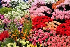 Loja de flor imagem de stock royalty free