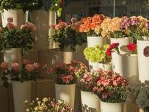 Loja de florista planty de rosas cor-de-rosa e laranja e gree amarelos vermelhos imagens de stock