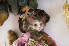 Loja do Natal das lembranças e da joia na cidade de Sainte-Andr em Hungria Imagens de Stock Royalty Free