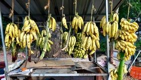 Loja Kerala da banana da borda da estrada foto de stock